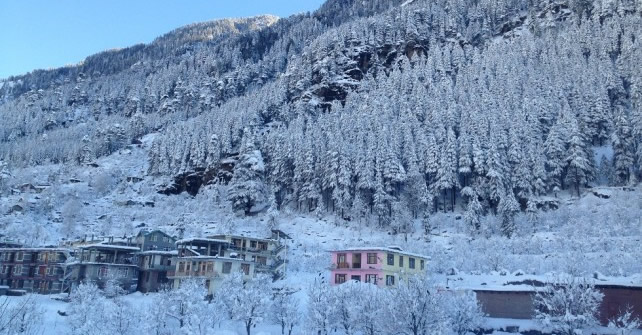 Apple Paradise Manali